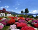小田急 山のホテルに割引で泊まれる。